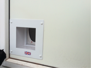 External View of Cat Flap